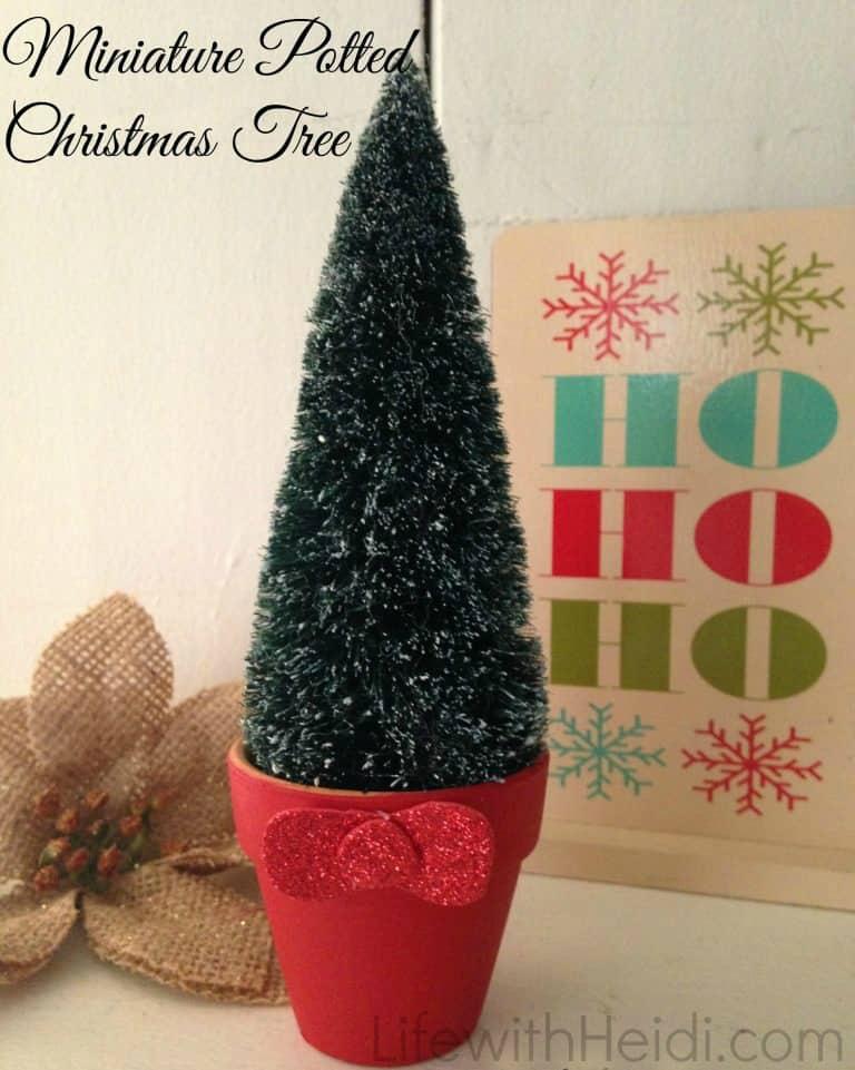 Miniature Potted Christmas Tree