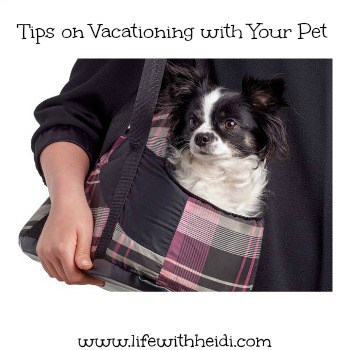 Tips on Vacationing with Your Pet
