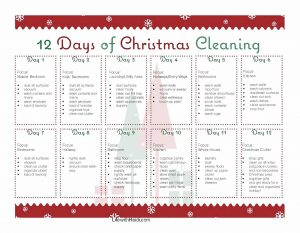 12 Days of Christmas Cleaning