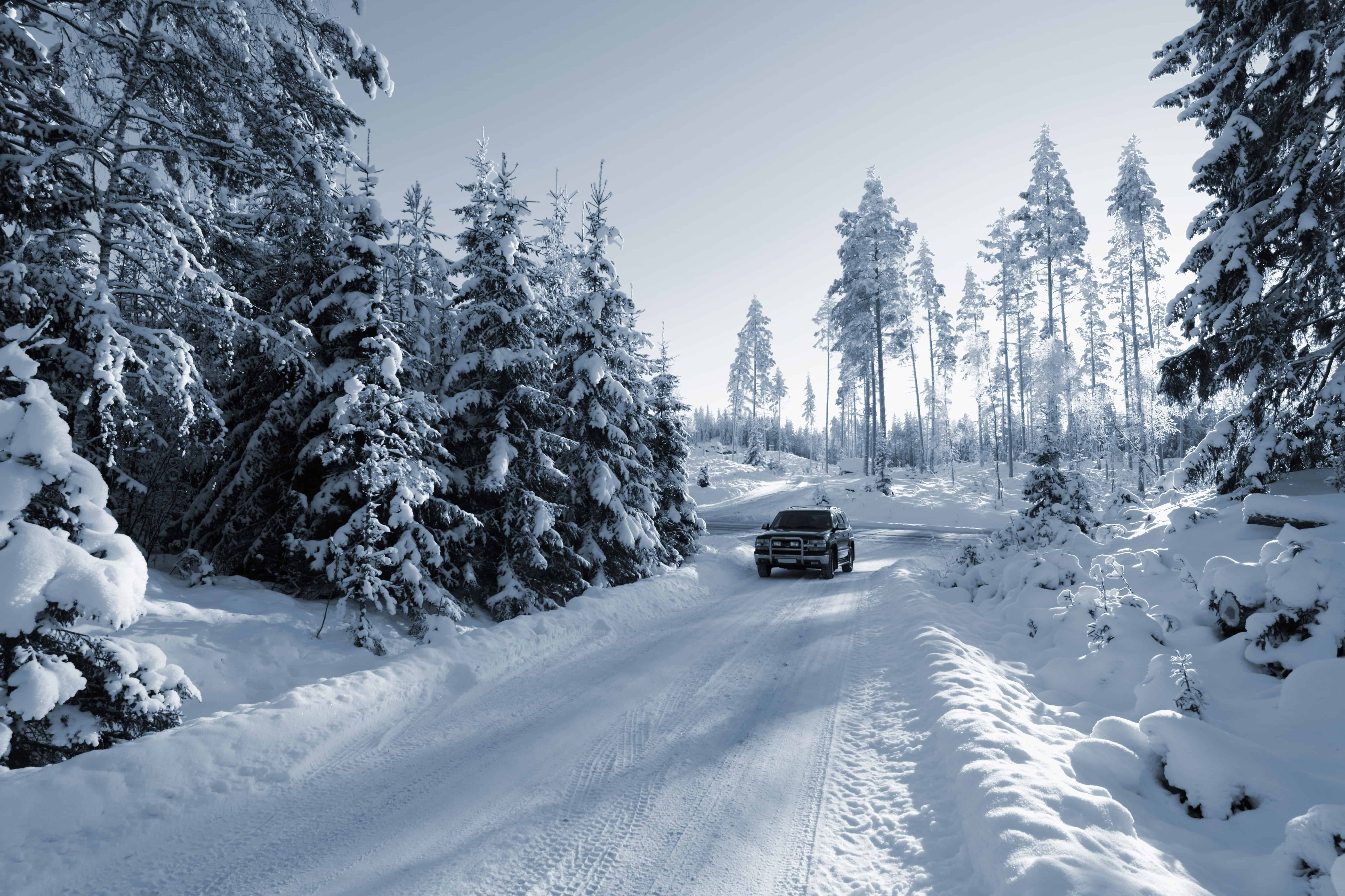 Winter Drives You Shouldn't Miss