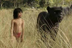 The Jungle Book Activities