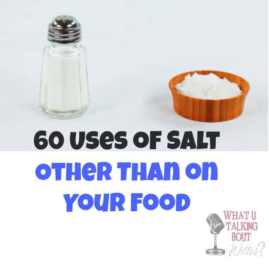 Uses-For-Salt