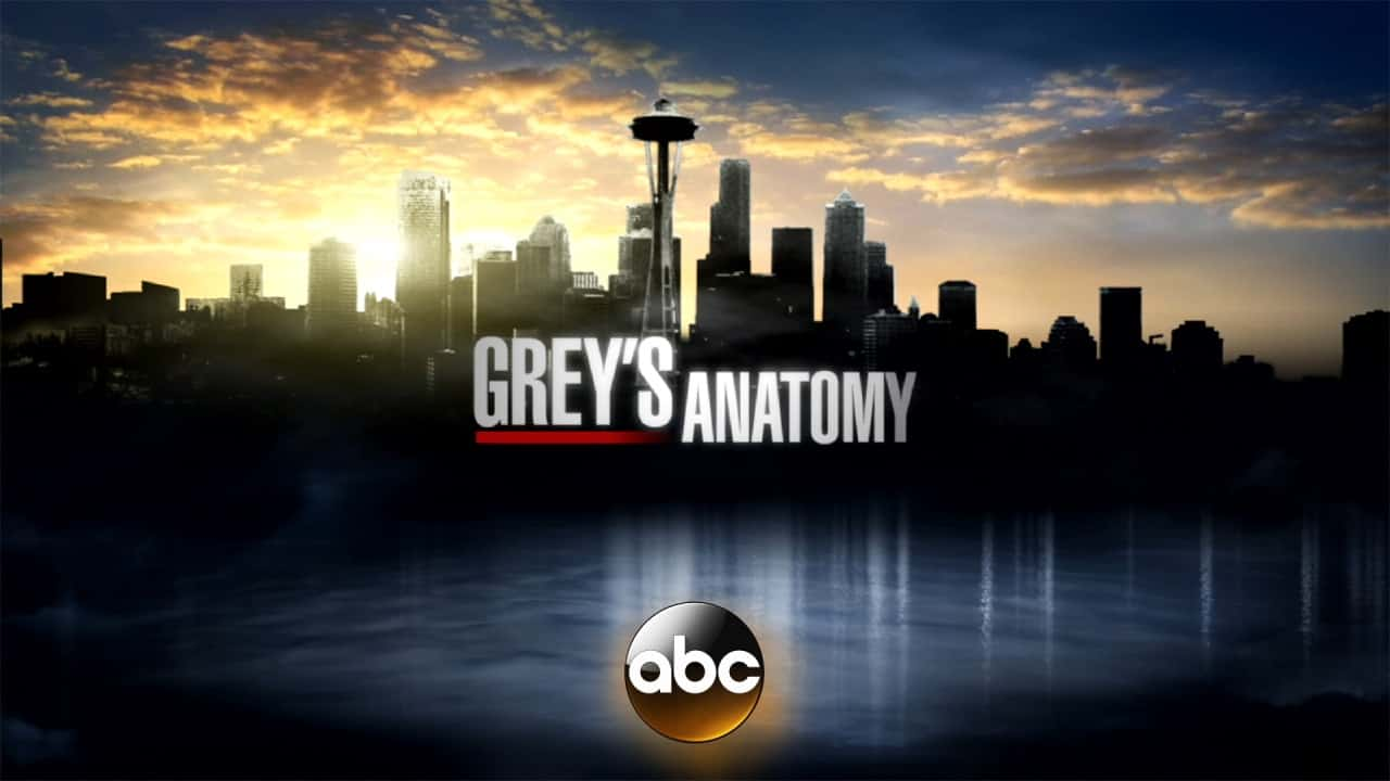 Greys-Anatomy-Set