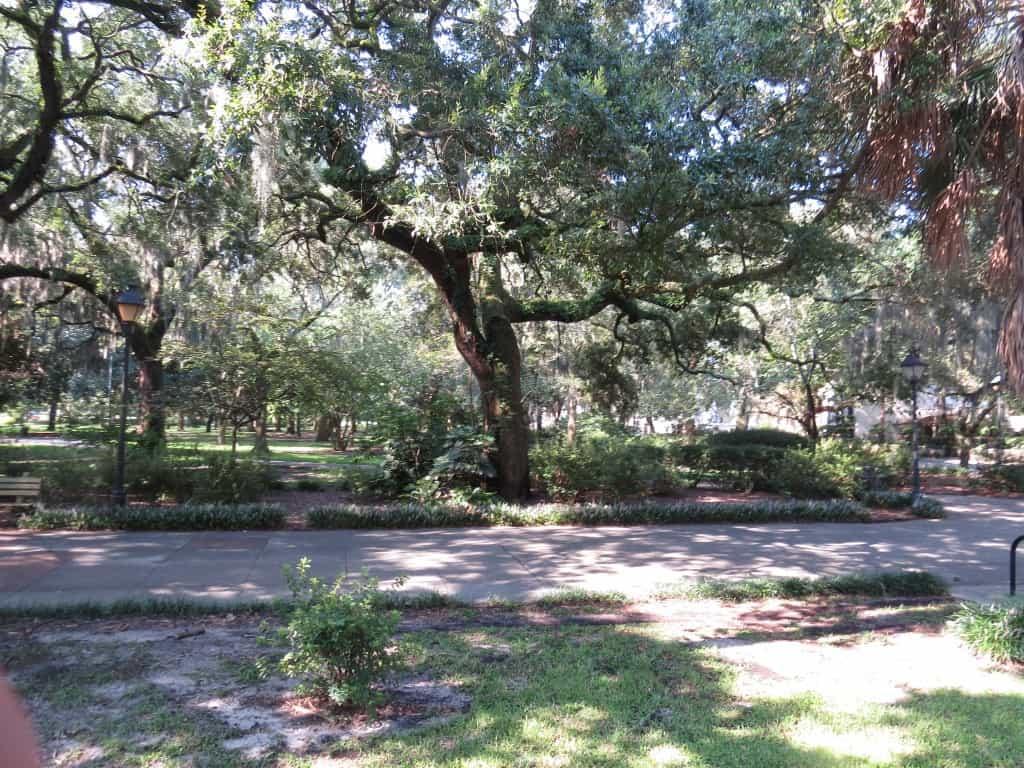 Old Savannah Tours