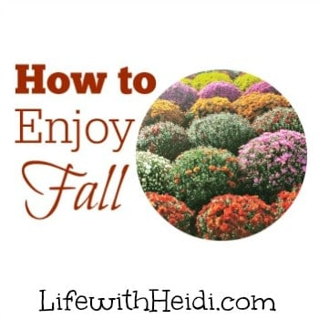 How to Enjoy Fall