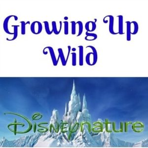 Growing Up Wild