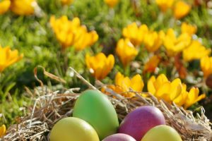 How to Make The Perfect Easter Basket for an Older Child