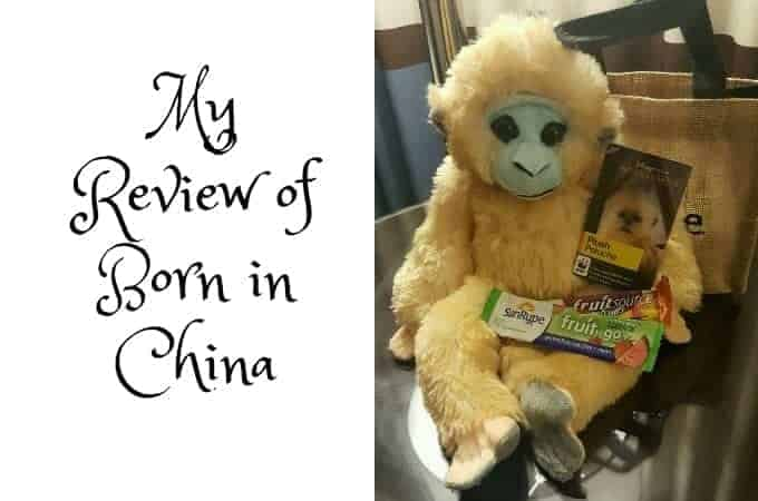 My Review of Born in China