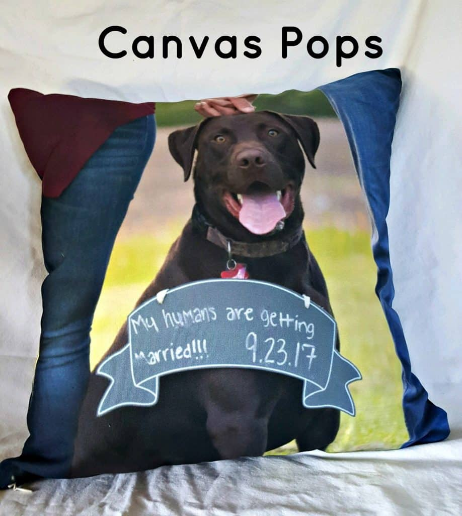 Canvas Pops are the best custom photo pillows on the web