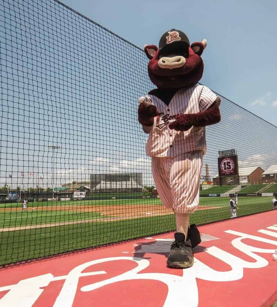 Sizzle The Mascot of the KC T-Bones