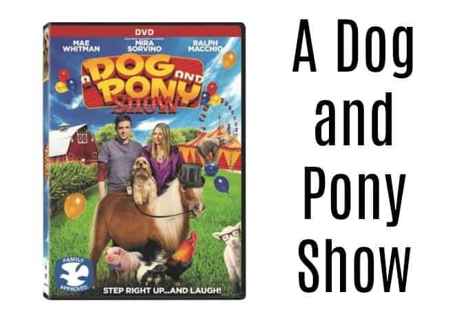 A Dog and Pony Show