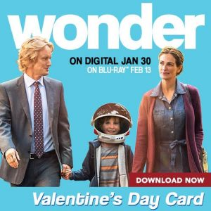 Wonder Valentines Cards