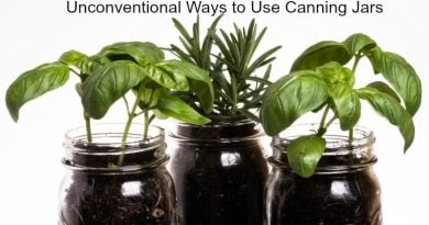 Unconventional Ways to Use Canning Jars