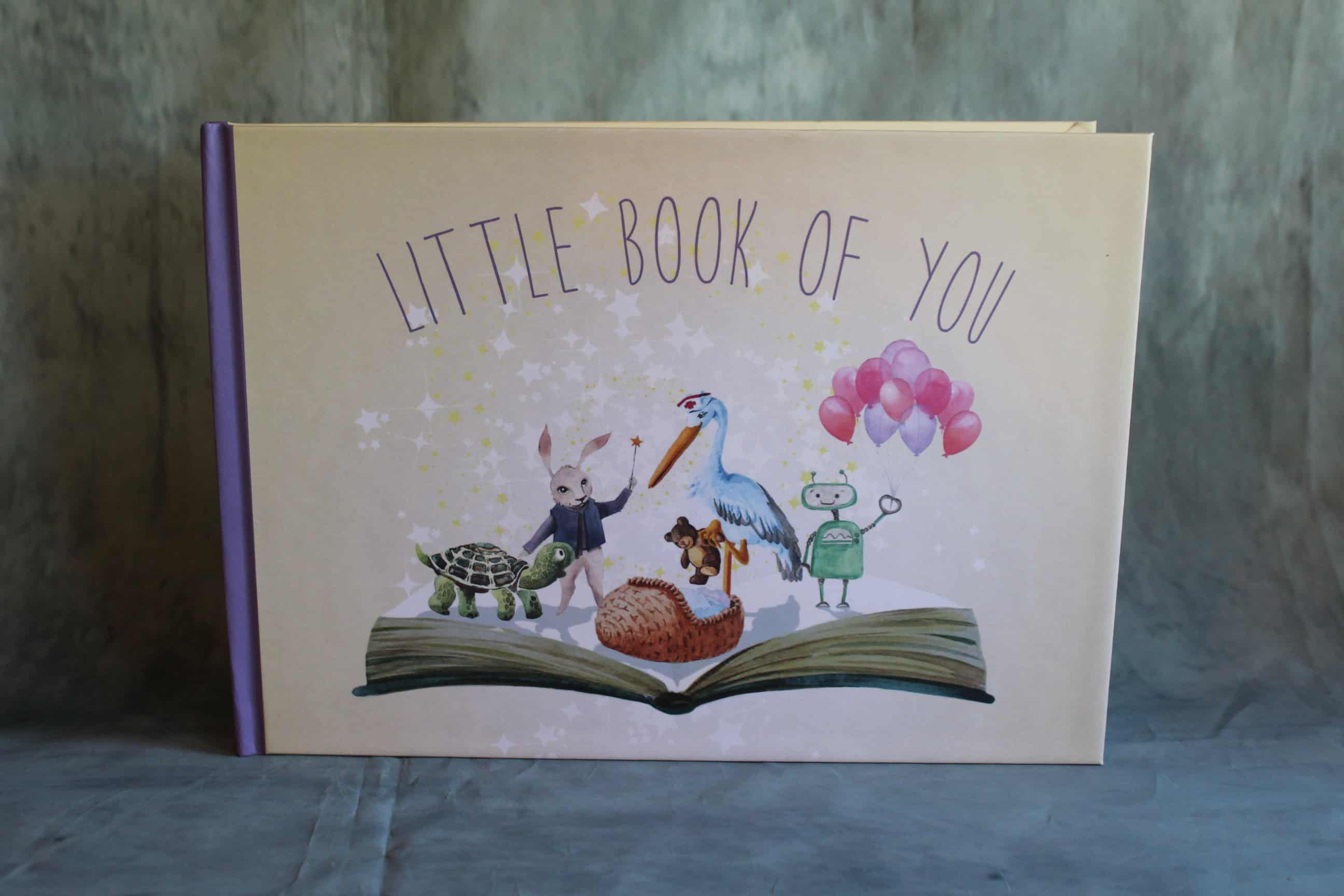Little Book Of You The Perfect Newborn Christmas Gift