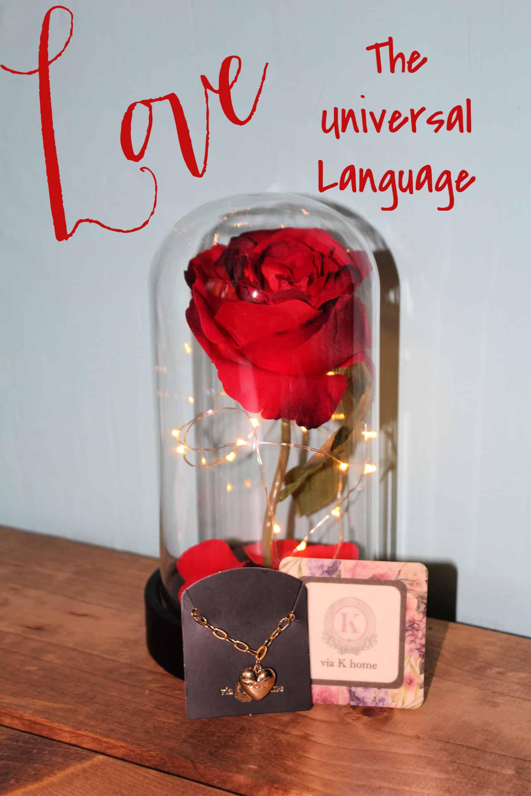 Love The Universal Language