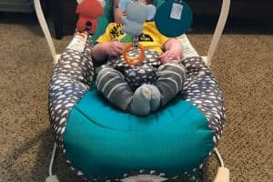 Infantino bouncer with Tater