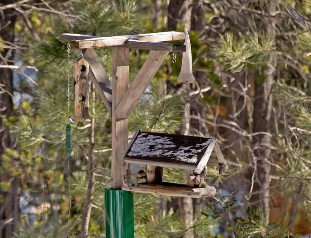 """What's a bird feeding station, and how can you create a system for dispensing plain bird food  that attracts many and varied feathered visitors?A Banquet Fit For Wildlife RoyaltyMany UK households choose to leave out a simple tray of plain bird seed, or a hanging suet ball, to tempt winged wildlife.However, if you really want to take your bird feeding and watching to a whole new level, you need to take your food provision to various levels too!This means creating a bird feeding station, which is a multi-layered and varied system for attracting more garden birds, across a wider range of species.Not all birds feed in the same way or enjoy the same foodstuffs. Just like humans really, who may be passionate about silver service restaurants, or prefer picnics on the beach.If you marry together different wild bird feeders, surfaces and contents, you can cover more preferences amongst your wildlife """"clientele"""".The Best Place For A Bird Feeder StationThere are no hard and fast rules on what your feeding station should look like – much depends on how much space you have to play with. However, where it is sited is crucial.It needs ample space around it for different bird species to feel safe and """"welcome"""", which generally means creating it well above ground level. Having safe perches within and around it can also help to reassure your feathered friends that they're not the ones on the menu! So, placing it under or near a tree makes sense.Alongside safety, your bird feeder station should take into account your line of view. You will want to watch the fun and games from the winged crowd you attract!Varying The Bird Food On OfferUsing a system of different platforms, food trays and feeders, you can offer wild garden birds the sort of treats they crave. For example, you could have peanuts for birds in squirrel-proof feeders, wild bird seed on raised surfaces, live mealworms on a tray and a juicy suet ball for birds suspended nearby.How To Make A Bird Feeding StationYou don't have"""