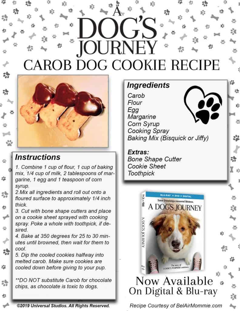 Dogs Journey Recipe