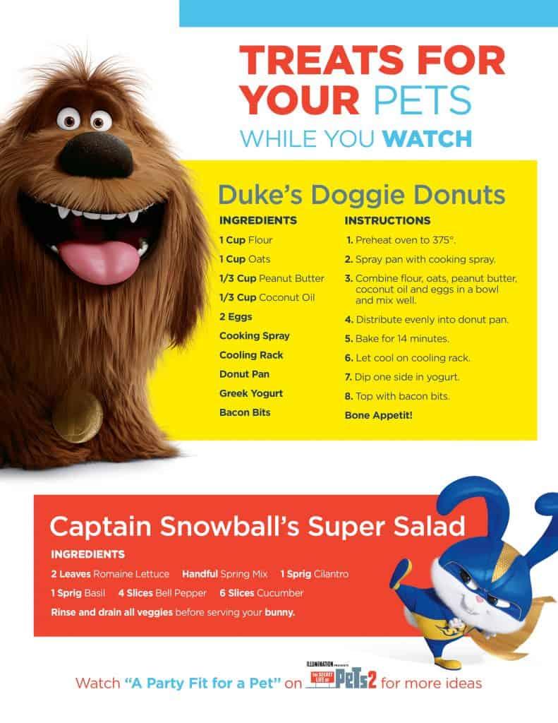 Secret Life of Pets Activities