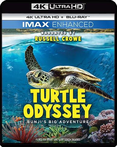 Turtle Odyssey Bungji's Big Adventure