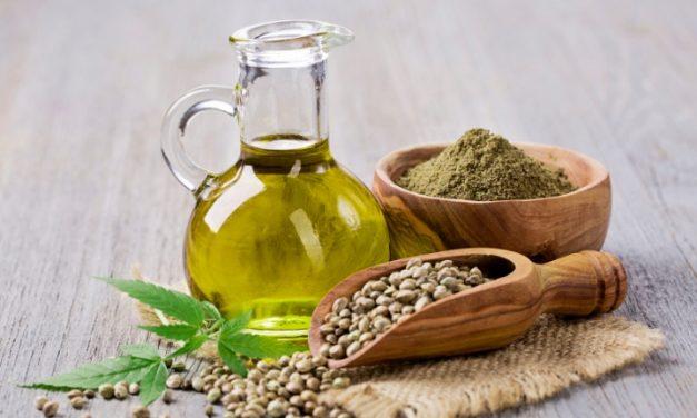 The Kind Kernel: Amazing Benefits of Hemp Seed Oil
