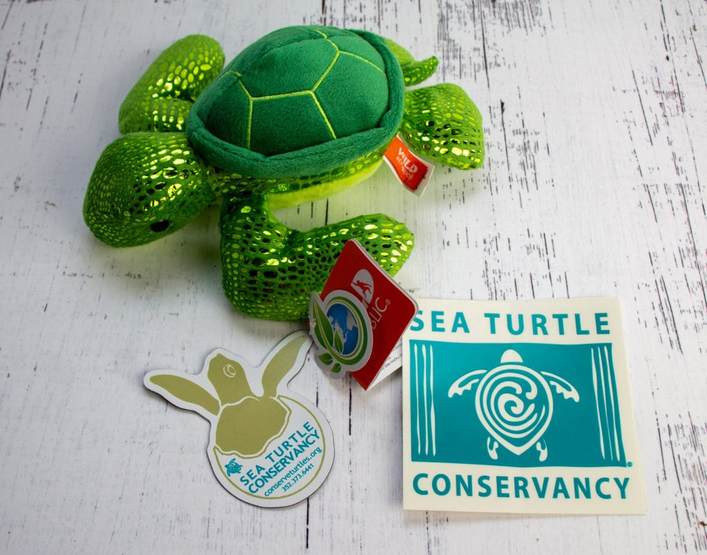 Sea Turtle Conservatory