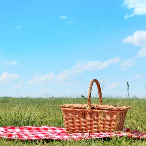 Check Out These Picnic Must Haves