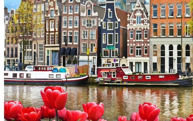 Top Restaurants to Try on Your First Trip to Amsterdam