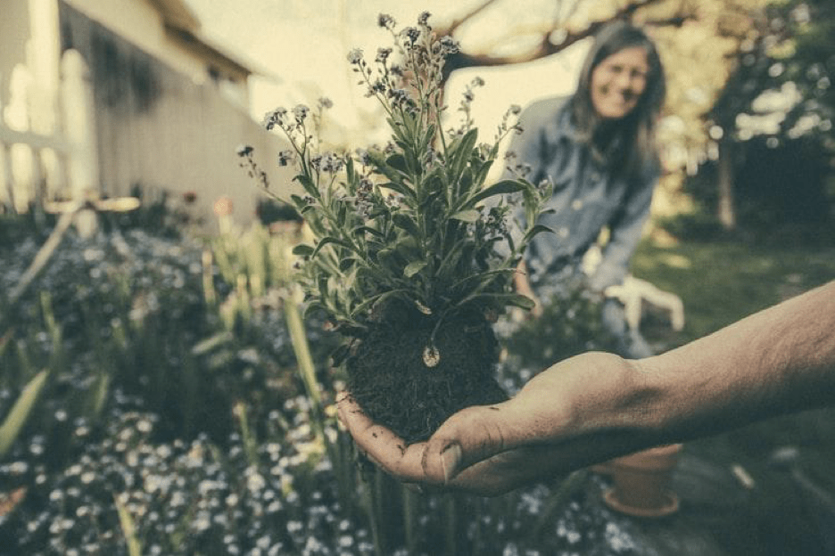 A person cradles a root ball attached to a bundle of flowers in their hand while an out-of-focus person smiles in the background.